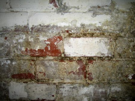 Crawl Space Leaks - Forever Foundation Repair